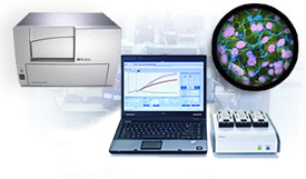 cell based assay equipment 1