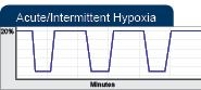 oxycylera84xov11